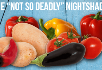 "Do ""Not So Deadly"" Nightshades Cause Inflammation and Pain?"
