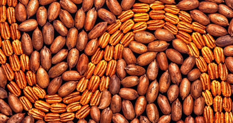 Introducing 8 Big Reasons to Have Healthy Nuts